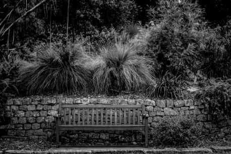 Bench (1 of 1)